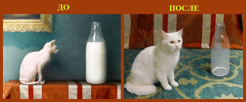 Действие молока