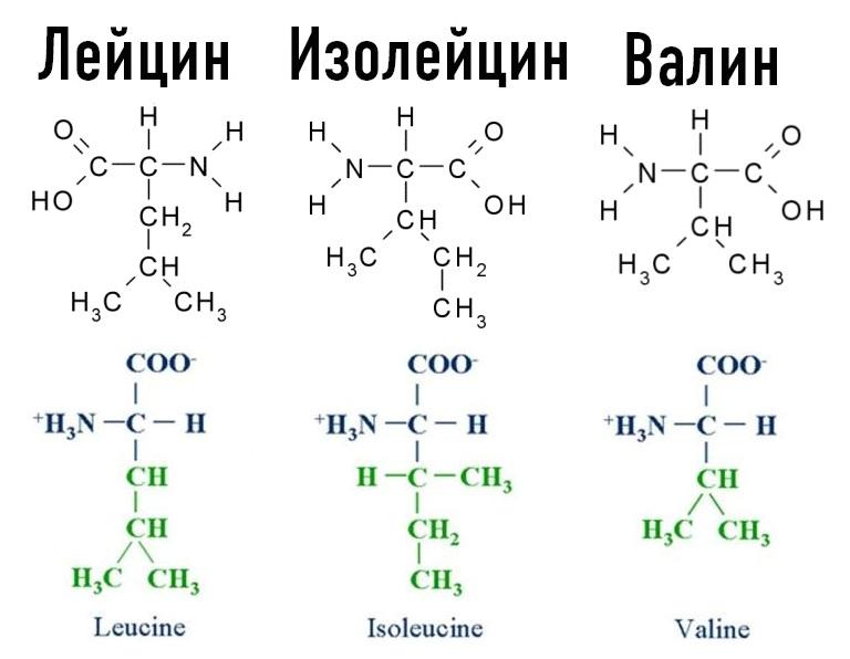 Изолейцин фото