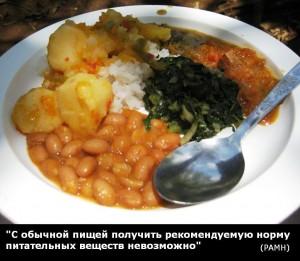 С обычной пищей получить рекомендуемую норму питательных веществ невозможно